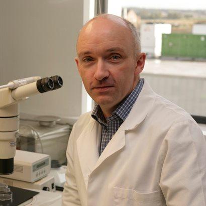 Prof. Dr. Kevin Sinclair